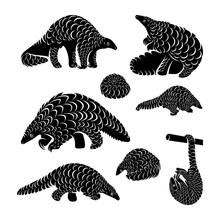 Set Of Anteater Logo Design Vector. Silhouette Of Anteater. Vector Illustration