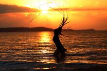 Młoda Dziewczyna Pozuje Do Zdjęć W Trakcie Zachodu Słońca