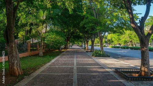 Paseo de Montejo Mérida Yucatán México Fototapet
