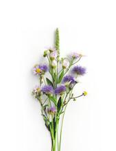 Bouquet Of Wild Flowers Isolat...