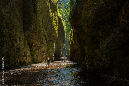 Obraz na plátne Day hikers in Oneonta Gorge, Columbia River Gorge National Scenic Area, Oregon
