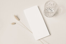 Modern Summer Stationery Still Life. Glass Of Water, Cocktail, Soft Shadows And Lagurus Ovatus Grassy Foliage. Blank Menu Card Mock Up Scene. Beige Table Background. Simple Flat Lay, Top View.