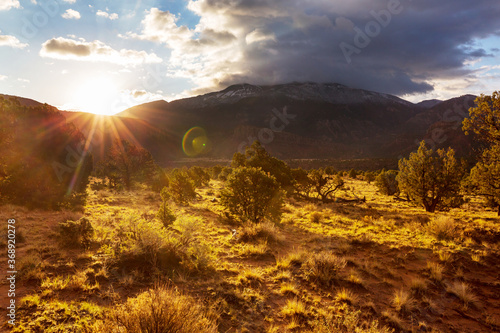 Fototapety, obrazy: American prairie