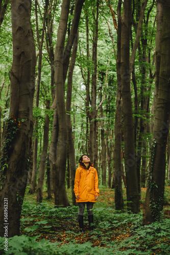 Obraz woman in yellow raincoat walking by rainy forest - fototapety do salonu