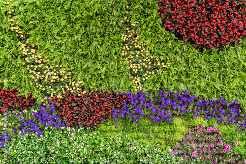 Photo Background material of flowers and plants wall..