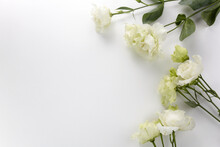 Eustoma Flowers Background In ...