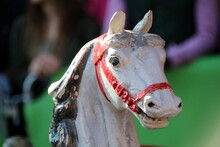 Close-up Portrait Of A Carousel Horse