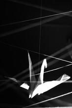 Origami Crane Isolated On Black
