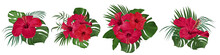 SET Of Tropical Bouquets. Red Hibiscus. Monstera Leaves, Palm Trees. Exotic Plants. Flowers On A White Background.