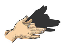 Dog Shadow By Hands Color Sket...