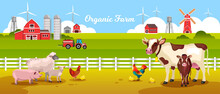 Organic Farm Landscape With Cow, Pig, Sheep, Lamb, Chicken, Rooster, Fence, Tractor, Field, Barn. Rural Landscape With Farming Animals, Wind Turbine, Mill, Water Tower. Agriculture Vector Background