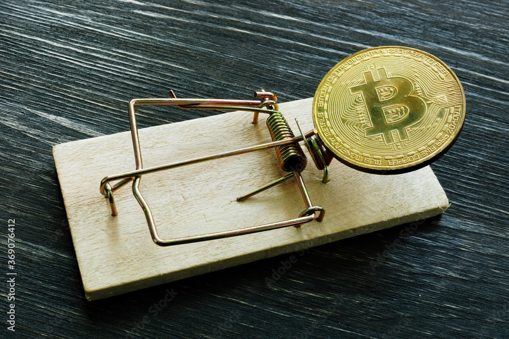 Fototapeta Mousetrap and bitcoin coin. Cryptocurrency scam or fraud concept.
