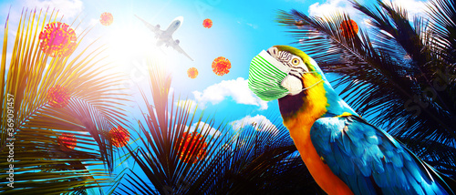 Obraz Macaw parrot with medical mask on vacation - fototapety do salonu