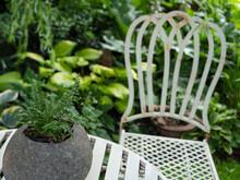 Sommerzeit In Einem Garten Im Münsterland