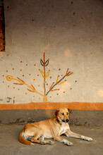 A Dog Lying On A Veranda Next To A Mural Looking Like A Tree, Somewhere In Africa