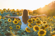 Young beautiful woman having fun in a sunflower field on a beautiful summer day. View from behind.