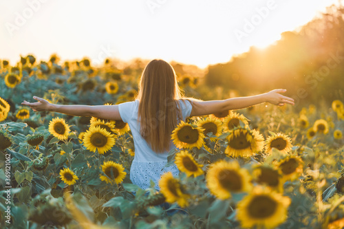 Obraz Young beautiful woman having fun in a sunflower field on a beautiful summer day. View from behind. - fototapety do salonu