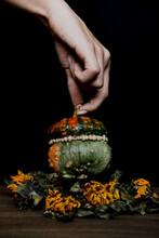 Pumpkin Still Life.
