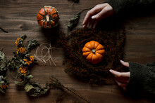 Autumn And Halloween Decoratio...