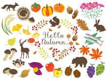秋のイメージ、野菜や...