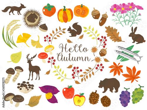 秋のイメージ、野菜や果物や動物などのイラスト素材