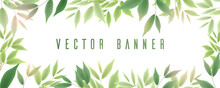 Banner With Green Foliage, Bra...