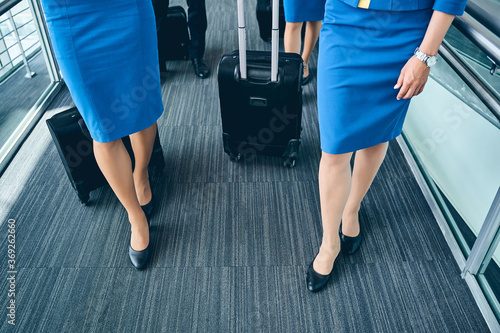 Four stylish airline employees standing at the airport Fototapet