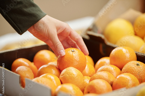 Photo Close-up of unrecognizable customer touching tangerine in box while choosing it