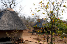 The Peaceful Environment Of A Typical Rest Camp In An African Game Reserve In Zimbabwe