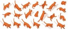 Red Cat Isometric Pack. 3d Kit...