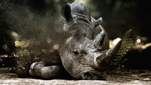 Rhino Fantasy Art