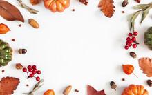 Autumn Composition. Dried Leav...