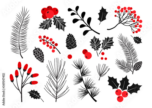 Cuadros en Lienzo Christmas vector plants, holly berry, christmas tree, pine, rowan, leaves branches, holiday decoration, winter symbols isolated on white background