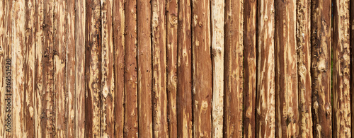 Fototapeta Wooden surface for natural background. Fence made of tree trunks.
