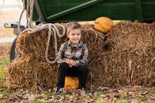 Cheerful Little Boy At Pumpkin...