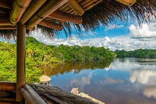 Amazon Rainforest Landscape Se...