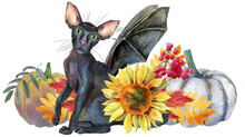 Black Cat With Bat Wings With ...