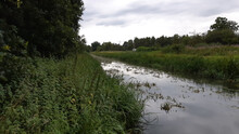 View On Kleine Nete River In K...