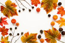 Frame Of Bright Colorful Autumn Leaf Decoration. Copy Space For Advertisement Or Your Text Here
