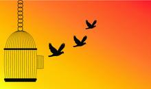 Freedom Concept,Bird Flying Ou...