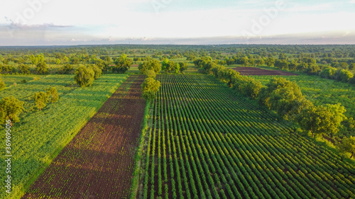 Photo Aerial top view of agriculture field