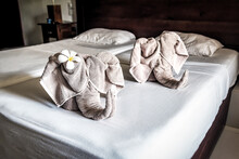 Towels In The Shape Of Elephan...