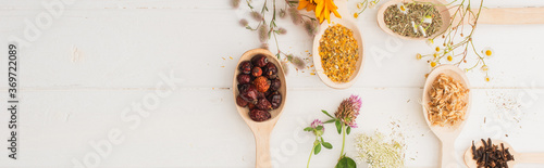 Fototapeta panoramic shot of herbs in spoons and flowers on white wooden background, naturopathy concept obraz