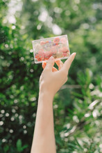Clear Cassette Filled With Dried Flowers Held In Hands In Front Of Green Bushes Springtime Music