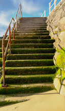 Stone Steps With Alage Leading Up From A Beach With Blue Sky.
