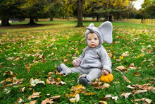 Cute Baby Boy In Elephant Costume For Halloween With Pumpkin