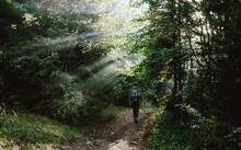 Man Hiking In The Morning On T...