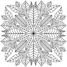 Mandala Formed With Branches And Leaves Of Different Sizes Drawn On A White Background For Coloring, Vector, Autumn