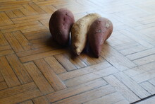 Story Sweet Potatoes And The Y...