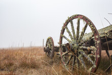 Old Wheel Of A Vintage Cart Pulled By Horses